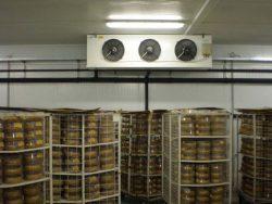 Подвальный склад, переоборудованный для хранения продуктов питания.