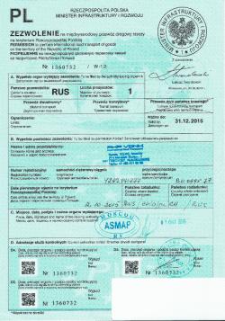 Польский «дозвол» на въезд российского грузовика.
