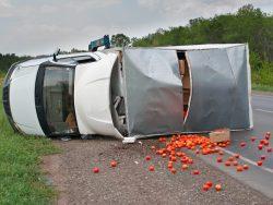Перевозка пищевых продуктов - страхование груза от ДТП.